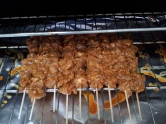 Chicken Satay (20)