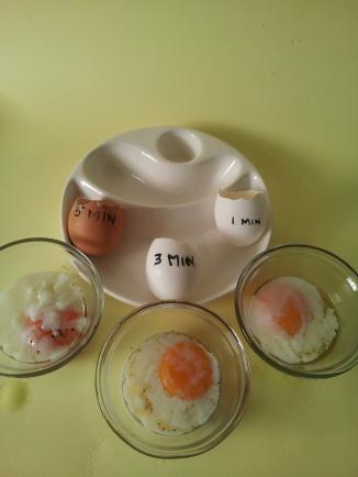 Eggs3 (21)