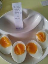 Eggs3 (30)