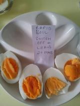 Eggs32
