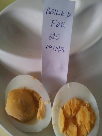 Eggs33