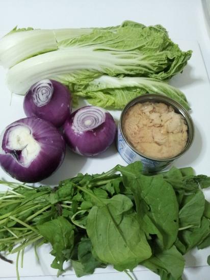 Tuna and Braised onion salad (1)