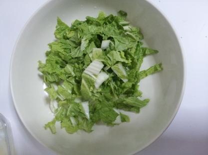 Tuna and Braised onion salad (5)