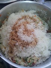 Veg fried rice (10)