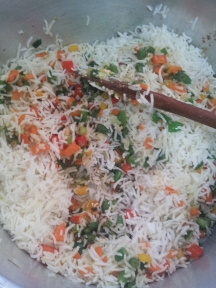 Veg fried rice (9)