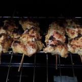 Kastoori Kebab (15)