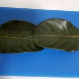 kottige-gunda-idlis-2