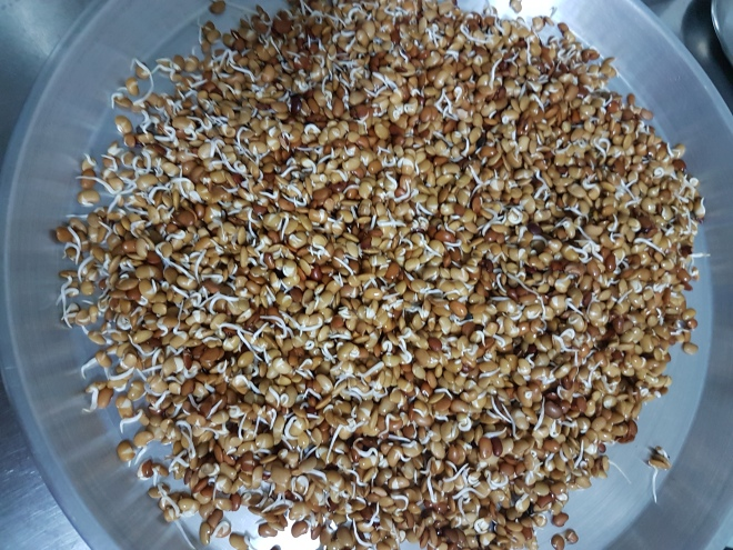 Kulith sprouted vegetable (3)