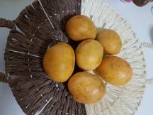 Mango Curry (2)