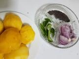 Mango Curry (6)