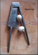 Beetle Areca nut cracker