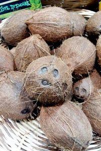 coconuts dehusked