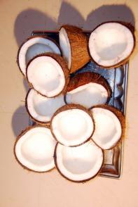 Roce coconuts