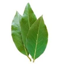 Bay leaves